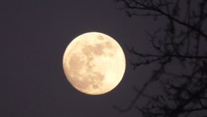 Super blue moon i zaćmienie raz na 150 lat